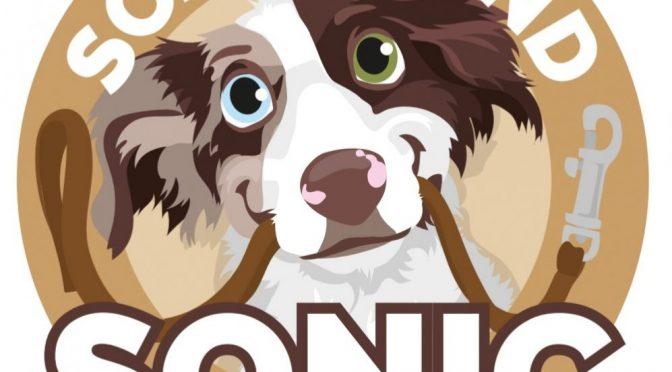 Schulhund SONIC